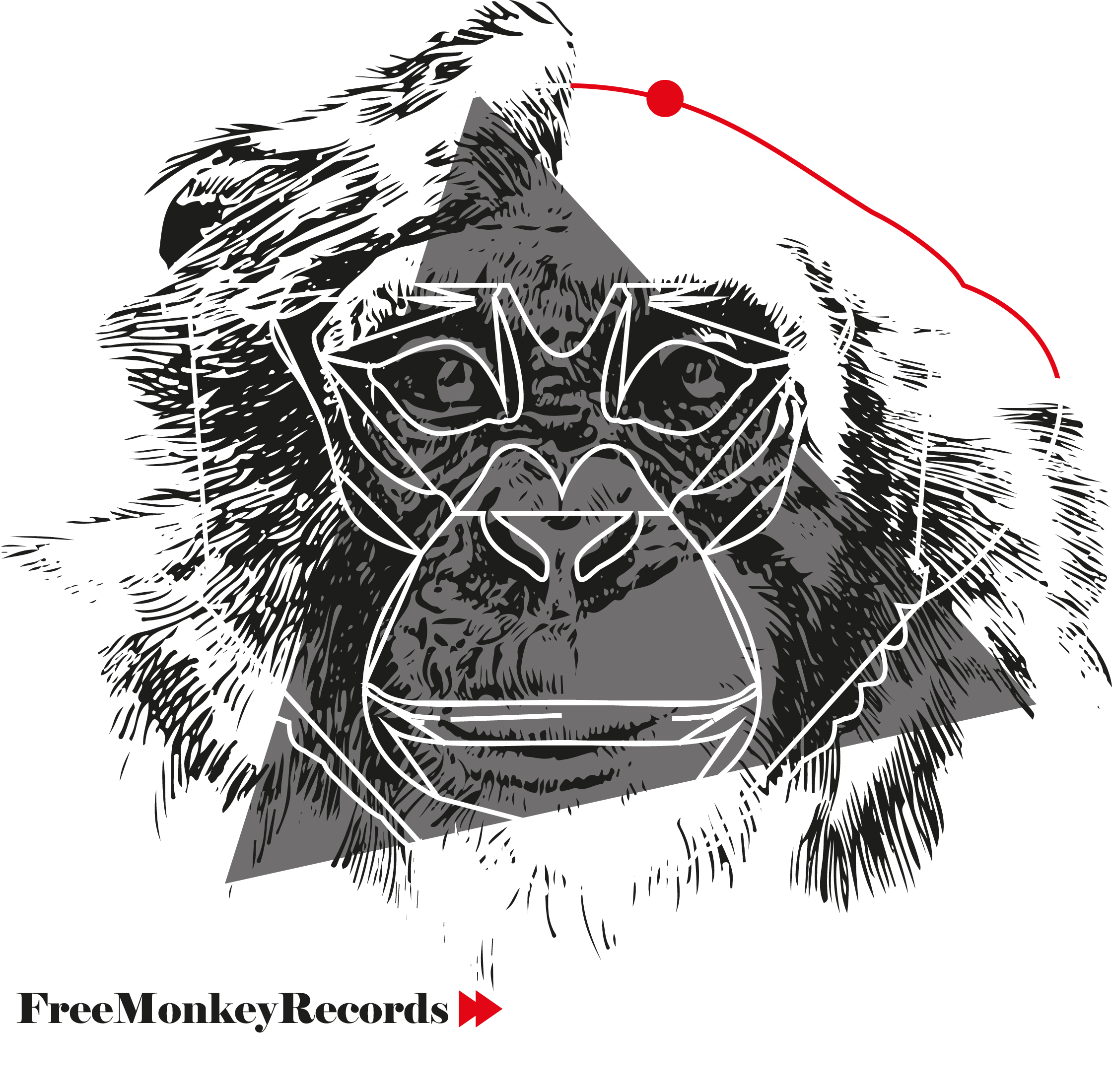 FreeMonkeyRecords2
